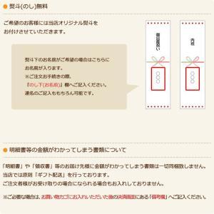 おむつケーキ オムツケーキ ミキハウス 使用 出産祝い 名前入り 2段 おむつケーキ|gift-one|10