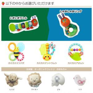 おむつケーキ オムツケーキ 出産祝い 出産祝 はらぺこあおむし 3段 おむつケーキ|gift-one|02