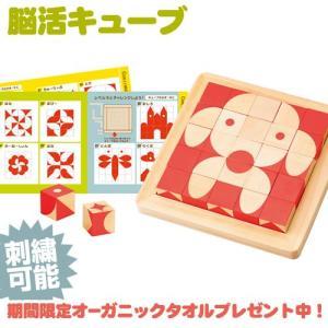 エドインター 脳活キューブ 出産祝い 平面作例140問 立体作例10種類収録 キューブを自由に組み合わせることができる模様合わせパズル|gift-one