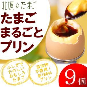 産地直送 淡路島  北坂たまご たまごまるごとプリン (9個セット)|gift-only