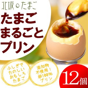 産地直送 淡路島  北坂たまご たまごまるごとプリン (12...
