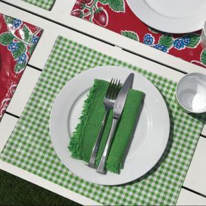 ランチョンマット テーブルマット オーストラリア製メキシカンオイルクロス素材 BenElke 職場や家のインテリアに 両面リバーシブルで防水 gift-trine-pro