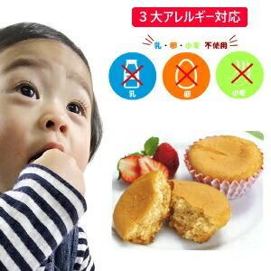 お米deメープルマフィン 10個入り アレルギー対応 卵不使用 小麦不使用 乳不使用 米粉 メープルシロップ|giftconcierge01