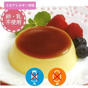 アレルギー対応 豆乳で作ったとろけるプリン10個入り 乳、卵不使用 デザート|giftconcierge01
