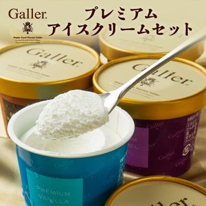 送料無料ガレー プレミアム チョコレート アイス ギフト 3種類 ホワイト バニラ ミルク キャラメ...