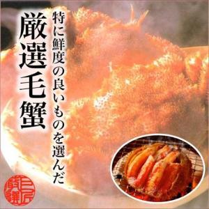 北海道産毛蟹 350g×2杯 KI-11-1|giftlink