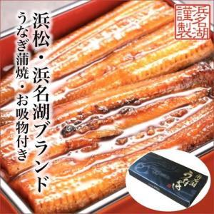 浜松・浜名湖うなぎ蒲焼4人前(2人前×2セット) KI-69|giftlink