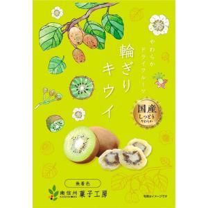 南信州菓子工房 国産・ひとくちキウイ 22g×1袋 国産 キウイ使用 ドライフルーツ|giftmiwa