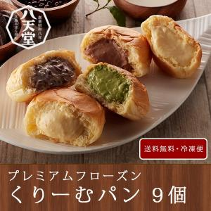 八天堂 クリームパン 9個 プレミアムフローズンくりーむパン詰合せ ( 送料無料 お取り寄せグルメ)