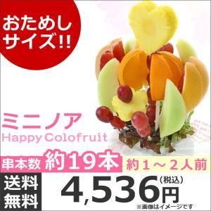 おためしハッピーカラフルーツ ミニノア 約1〜2人前【お届け日選択可能】