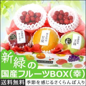 果物 いちご ギフト 詰め合わせ 果物詰め合わせ 冬の国産フルーツBOX 幸 誕生日 プレゼント 国産 盛り合わせ お歳暮 御歳暮 クリスマス 送料無料