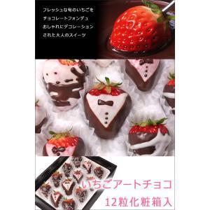 イチゴ ギフト サプライズプレゼント イチゴチョコ 12粒入り バースデーケーキ 誕生日 バレンタイン プレゼント いちごアートチョコ  お祝い  送料無料