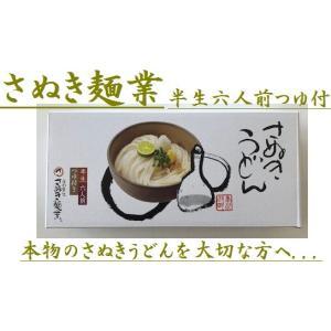 香川さぬき麺業 さぬきうどん 半生六人前つゆ付×6箱
