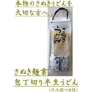 香川さぬき麺業 さぬきうどん 半生包丁切り六人前つゆ付×6袋