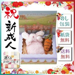 敬老の日 プレゼント 2019 セット ベビー キッズ 玩具 バニーズバイザベイ 雪うさぎの赤ちゃん にんじんラトル ギフトBOXセット ピンク|giftstyle