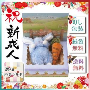 敬老の日 プレゼント 2019 セット ベビー キッズ 玩具 バニーズバイザベイ 雪うさぎの赤ちゃん にんじんラトル ギフトBOXセット ブルー|giftstyle