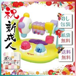 敬老の日 プレゼント ギフト 2019 おすすめ おしゃれ おもちゃ ベビー キッズ 玩具 まわしてくるくるサウンド giftstyle