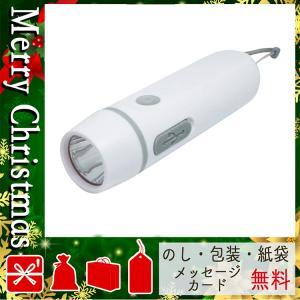 クリスマス プレゼント 懐中電灯 ライト ギフト 2020 懐中電灯 ライト ダイナモ&USB充電ライト ホワイト|giftstyle