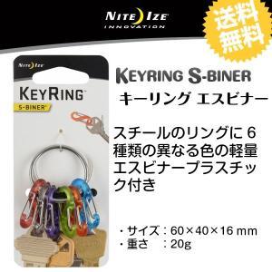 キーリング エスビナー シルバー KRG2-11-R3|gigamedia2