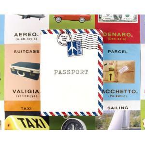 Mighty Passport Cover マイティーパスポートカバー (エアメール)|gigamedia2|05