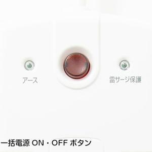 イーサプライズ 12個口可動式電源タップ トリプルノーマルタイプ(S9PC01RB)|gigamedia2|04