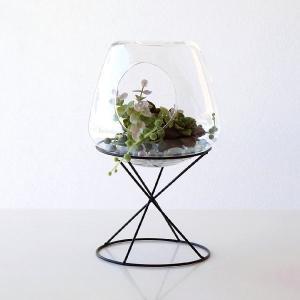 テラリウム ガラスドーム インテリア おしゃれ フラワースタンド 容器 入れ物 ガラスドームテラリウム|gigiliving