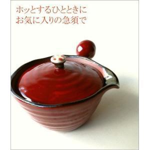 急須 きゅうす おしゃれ 陶器 かわいい 有田焼 日本製 楽らく急須 一|gigiliving|02