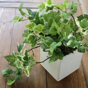 フェイクグリーン CT触媒 消臭 グリーン 観葉植物 インテリア 卓上 机上 玄関 トイレ CT触媒付きフェイクグリーンのミニポット アイビー|gigiliving