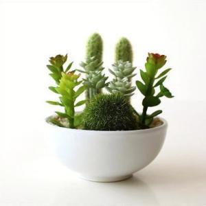 フェイクグリーン CT触媒 消臭 グリーン 観葉植物 サボテン 多肉植物 苔球 インテリア 卓上 机上 玄関 トイレ CT触媒付きフェイクグリーンのミニポットB|gigiliving
