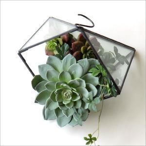 テラリウム ガラス 卓上 吊り下げ ハンギング 吊るす おしゃれ 観葉植物 小物 グリーン ディスプレイ 容器 ボタニカル アイアンとガラスのテラリウム A|gigiliving