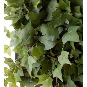 壁飾り 人工観葉植物 壁掛けインテリア ディスプレイ リビング 光触媒 壁面 オーナメント パネル ウォールデコレーショングリーン A|gigiliving|03