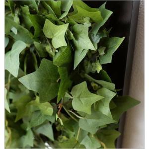 壁飾り 人工観葉植物 壁掛けインテリア ディスプレイ リビング 光触媒 壁面 オーナメント パネル ウォールデコレーショングリーン A|gigiliving|04
