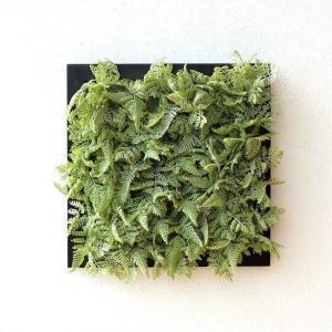 壁飾り 人工観葉植物 壁掛けインテリア ディスプレイ リビング 光触媒 壁面 オーナメント パネル ウォールデコレーショングリーン B|gigiliving