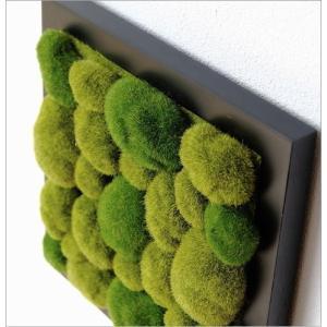 壁飾り 観葉植物 壁掛けインテリア ディスプレイ リビング 光触媒 壁面 オーナメント パネル ウォールデコレーショングリーン C|gigiliving|03