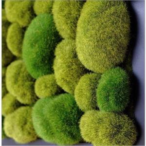 壁飾り 観葉植物 壁掛けインテリア ディスプレイ リビング 光触媒 壁面 オーナメント パネル ウォールデコレーショングリーン C|gigiliving|04