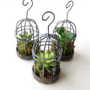 フェイクグリーン 多肉植物 かわいい 吊り下げ インテリア 人工観葉植物 フェイクなカクタスのミニゲージ 3タイプ|gigiliving