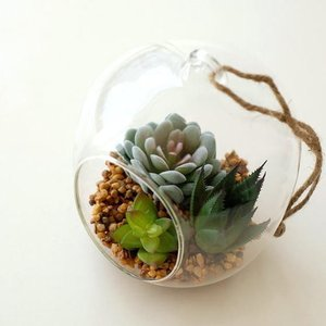 ガラスのポットに入った フェイクな多肉の寄せ植え  置いたり、吊るしたり 飾り方は自由自在  中の小...