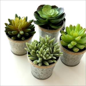 フェイクグリーン 多肉植物 観葉植物 インテリア 造花 オブジェ 壁掛 オブジェ ミニ鉢 カクタスブリキポット 4タイプ|gigiliving