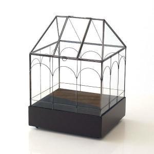 テラリウム ガラス アイアン ガラスケース ハウス デザイン おしゃれ 植物 容器 ディスプレイ メタルとガラスのテラリウムハウス|gigiliving