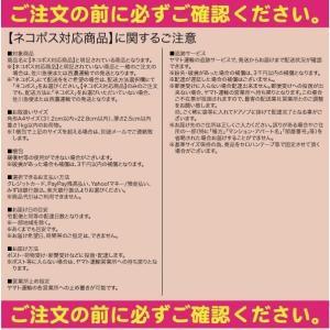 S&F スパチュラ 【ネコポス対応商品】|gill|02