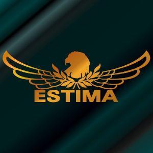 エスティマ ステッカー 車 おしゃれ  :8cm×22cm (金色)  エンブレム リアガラス ステッカー かっこいい|ginkage