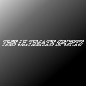 ハヤブサ アルティメットスポーツ 究極のスポーツバイク ドレスアップ ステッカー ginkage