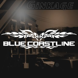 サーフィン 車 ステッカー 名入れ ゴシック体 文字 メーカー ロゴ カッティング ステッカー|ginkage