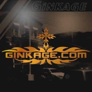 サーフ ステッカー かっこいい 車 ステッカー サイズ:12cm×28cm :ゴールド色 リアガラス ステッカー 車  ステッカー サーフ インテリア|ginkage