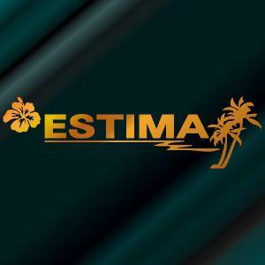 トヨタ エスティマ 車 ステッカー サーファーのおしゃれな ハワイアン エンブレム ゴールド色タイプ Sサイズ リアガラス用 他|ginkage