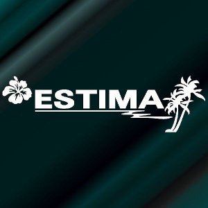 トヨタ エスティマ 車 ステッカー サーファーのおしゃれな ハワイアン エンブレム 白色タイプ Sサイズ リアガラス用 他|ginkage