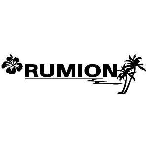 ルミオン ステッカー サーフ ステッカー 車 ステッカー エンブレム ハワイアン 黒色タイプ Sサイズ リアガラス用 他|ginkage