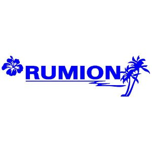 ルミオン ステッカー サーフ ステッカー 車 ステッカー エンブレム ハワイアン 青色タイプ Sサイズ リアガラス用 他|ginkage