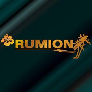 ルミオン ステッカー サーフ ステッカー 車 ステッカー エンブレム ハワイアン 金色タイプ Sサイズ リアガラス用 他|ginkage