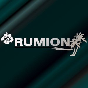ルミオン ステッカー サーフ ステッカー 車 ステッカー エンブレム ハワイアン 銀色タイプ Sサイズ リアガラス用 他|ginkage